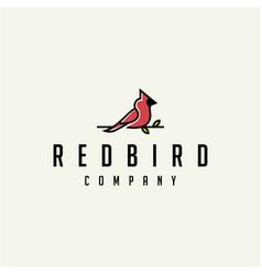 Cardinal bird logo design vector