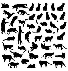 Cats silhouette set kitten in different pose vector