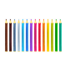 collection color pencils vector image