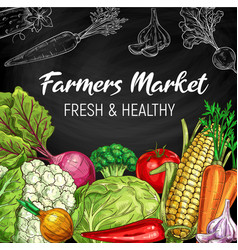 farm market vegetables chalkboard sketch vector image