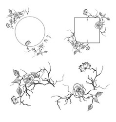 Floral decorative border and frame set vector