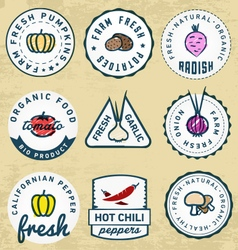 Organic and Bio Vegetables Badges vector image