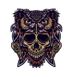 Owl skull vector