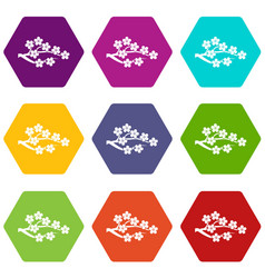 sakura icon set color hexahedron vector image
