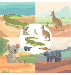 Set of cartoon australian animals isolated vector