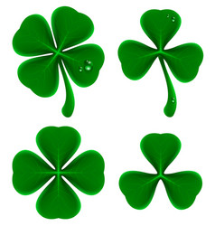Set of green leaves of clover shamrock and vector