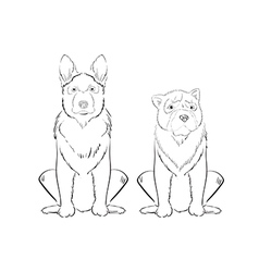 hand drawn dogs vector image vector image