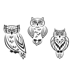Black and white owl bird tatoos vector image