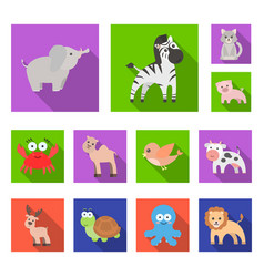 An unrealistic flat animal icons in set collection vector