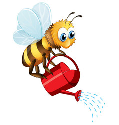 Bee watering on white background vector