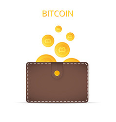 bitcoins in the wallet coins of gold color vector image