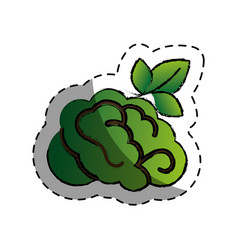 Brain human with tree creative icon vector