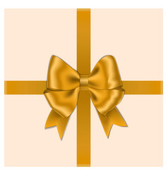 gold bow with ribbon and box isolated on white bac vector image