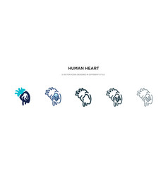 Human heart icon in different style two colored vector