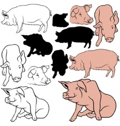 pigs set vector image