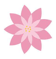 Pink flower natural decoration delicate vector