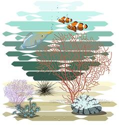 Reef123 vector