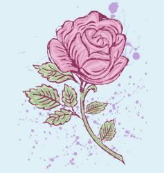 rose artistic vector image