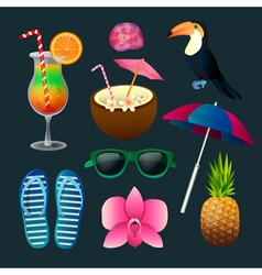 Tropical Elements Set Cocktails Flowers Sunglasses vector