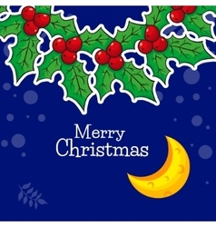 christmas wreath with Poinsettia and bright moon vector image