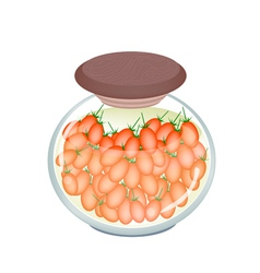 A jar delicious pickled roma tomatoes vector