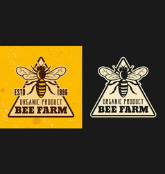 beekeeping and honey colored styles emblem vector image