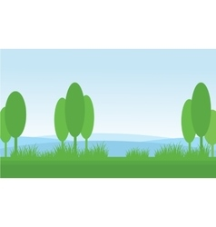 Nature scenery tree in fields vector image