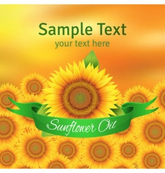 The label on the bottle of sunflower oil vector