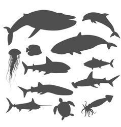 Marine Fauna Set of Aquatic Animals vector image
