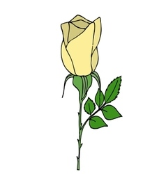 Bright yellow rose vector