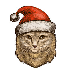 Cat kitty in a christmas hat sketch vintage vector
