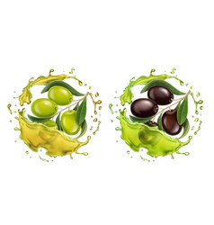 olive oil splash 3d realistic set vector image