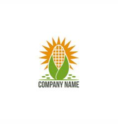 Sun corn logo vector