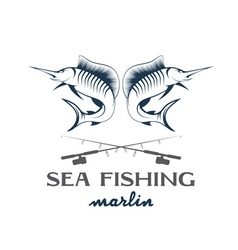 vintage sea fishing with marlin vector image