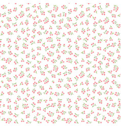 floral white pattern flower seamless background vector image