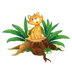 A cat sitting on a stump with leaves vector image