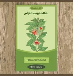 Ashwagandha plant-04 vector