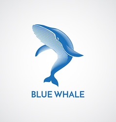 Blue whale logo sign vector