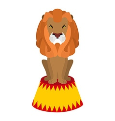 Circus lion Wild cruel animal sitting on pedestal vector