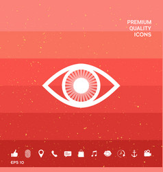 Eye symbol icon with iris vector