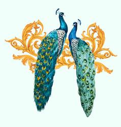 Watercolor peacock composition vector