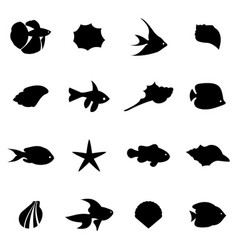 seahells and fish in isolated on white vector image