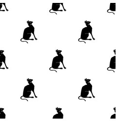 siamese icon in black style isolated on white vector image vector image