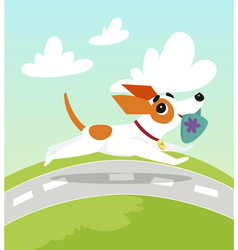 cute jack russell terrier running with slipper in vector image
