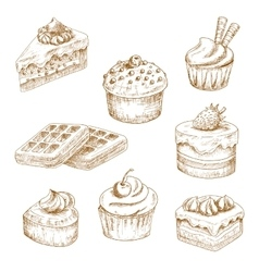 Delicious bakery and pastries sketches vector image