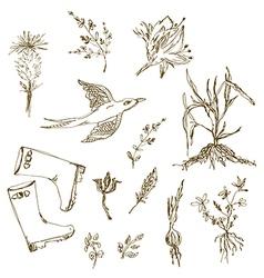 Garden herbs sketch with birds plants gumboots vector image