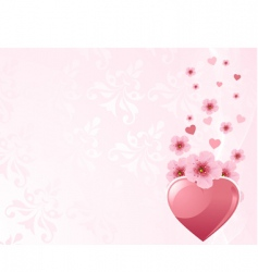 love heart and cherry blossom vector image