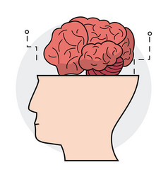 human head brain think concept vector image