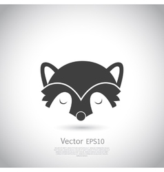 racoon icon vector image