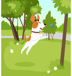 cute jack russell terrier dog playing with ball in vector image